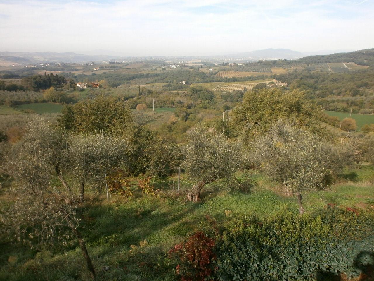 cerca  TERRENO AGRICOLO VENDITA Scandicci (zona San Michele Torri)